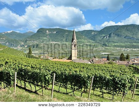 Famous Wine Village Of Tramin An Der Weinstrasse,south Tirol,trentino,italy