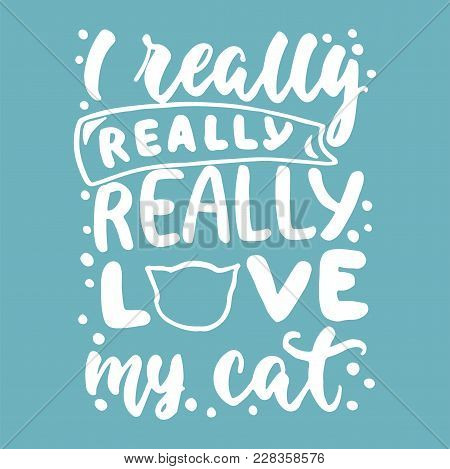 I Really Love My Cat - Hand Drawn Lettering Phrase For Animal Lovers On The Blue Background. Fun Bru