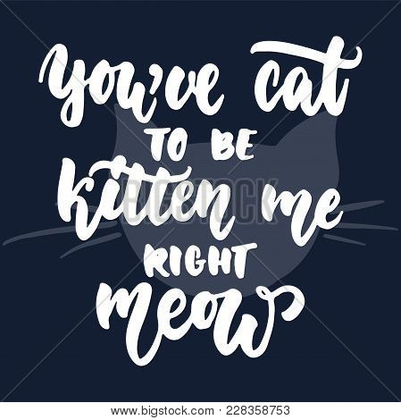 You've Cat To Be Kitten Me Right Meow - Hand Drawn Lettering Phrase For Animal Lovers On The Dark Bl
