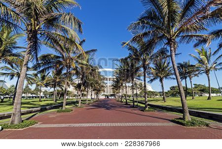 Palm Tree Lined Walkway Leading Towards Moses Mabhida Stadium
