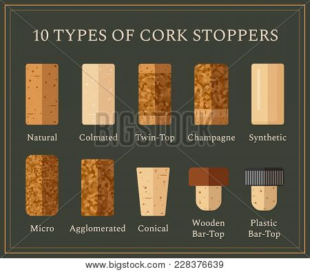 10 Types Of Cork Stoppers. Vector Set With Different Isolated Corks And Title For Each Kind On Dark