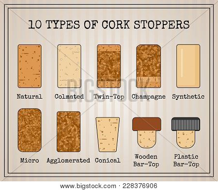Vector Set With 10 Types Of Cork Stoppers. Isolated Cork With Black Contour And Title For Each Kind
