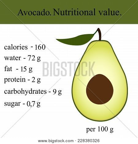 Healthy Lifestyle. Avocado. Nutritional Value Health Vector Illustration