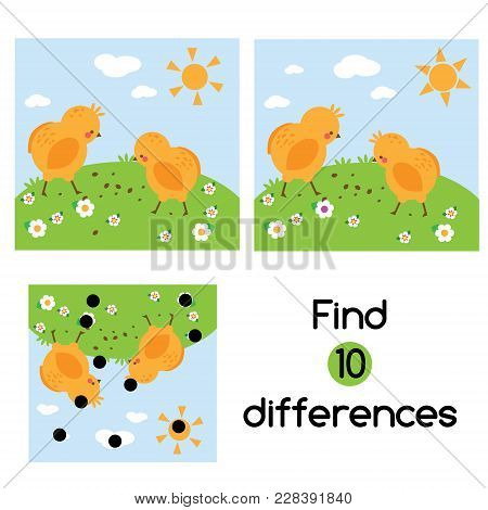 Find The Differences Educational Children Game With Answer. Kids Activity Sheet With Chickens On Gra
