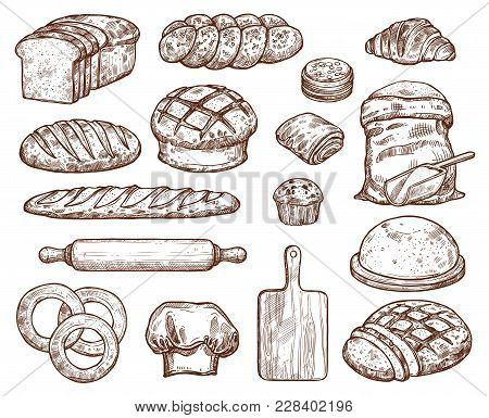Bakery Set With A Lot Of Types Fresh Bread. Images For Bakeshop Or Bakehouse. Cooking Utensils For B