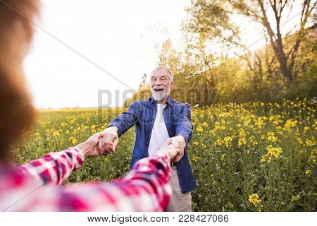 Beautiful Senior Couple In Love On A Walk Outside In Spring Nature Having Fun. Man And Unrecognizabl