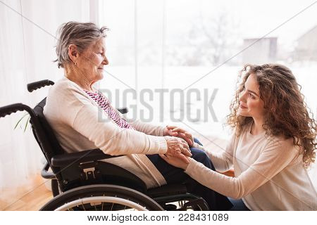 A Teenage Girl With Grandmother In Wheelchair At Home, Holding Hands. Family And Generations Concept