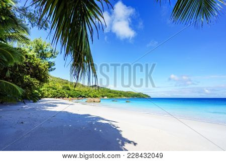 Paradise Beach.white Sand,turquoise Water,palm Trees At Tropical Beach,seychelles 17