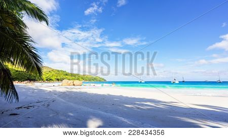 Paradise Beach.white Sand,turquoise Water,palm Trees At Tropical Beach,seychelles 31