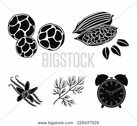 Fried Cacao Beans, Dill, Black Pepper, Vanilla.herbs And Spices Set Collection Icons In Black Style