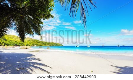 Paradise Beach.white Sand,turquoise Water,palm Trees At Tropical Beach,seychelles 30