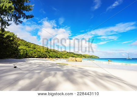 Paradise Beach.white Sand,turquoise Water,palm Trees At Tropical Beach,seychelles 33