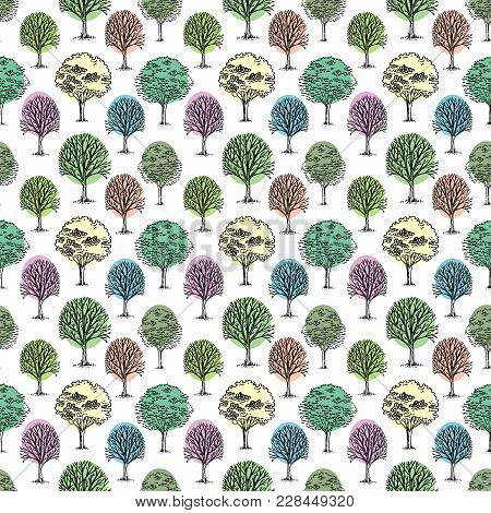 Vector Pattern With Trees And Bushes On White Background