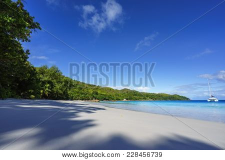 Paradise Beach.white Sand,turquoise Water,palm Trees At Tropical Beach,seychelles 10