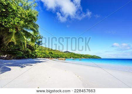 Paradise Beach.white Sand,turquoise Water,palm Trees At Tropical Beach,seychelles 15