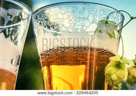 Glasses Of Cold Beer, Closeup. Beer Tasting Concept