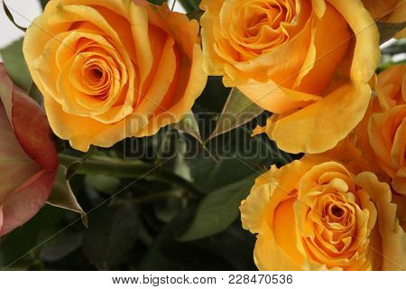 Flower bouquet background. Yellow roses.