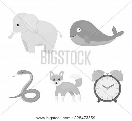 Whale, Elephant, Snake, Fox.animal Set Collection Icons In Monochrome Style Vector Symbol Stock Illu