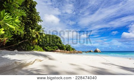 Paradise Beach.white Sand,turquoise Water,palm Trees At Tropical Beach,seychelles 6