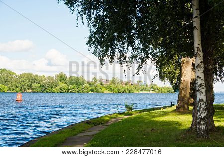 Forest And Buoy On A Lake At Summer Day