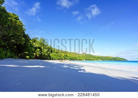 Paradise Beach.white Sand,turquoise Water,palm Trees At Tropical Beach,seychelles 11