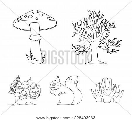 Dry Tree, Protein, Poisonous Fungus, Wildfire.forest Set Collection Icons In Outline Style Vector Sy