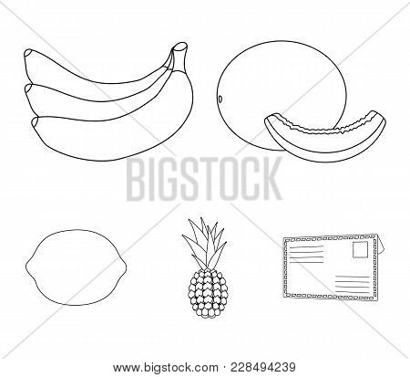 Melon, Banana, Pineapple, Lemon.fruits Set Collection Icons In Outline Style Vector Symbol Stock Ill