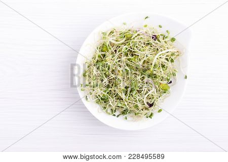 Mix Of Food Sprouts - Alfalfa, Radish, Clover In A Bowl. Micro Greens On White. Healthy Eating. Top