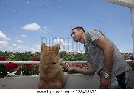 Akita Inu Puppy With Its Owner Enjoying On The Balcony