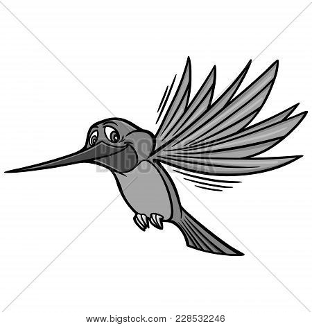 Hummingbird Illustration - A Vector Cartoon Illustration Of A Hummingbird Mascot.