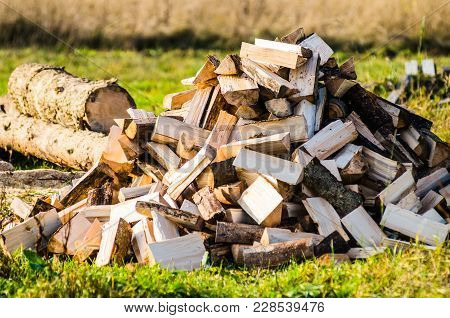 Pile Of Firewood. Preparation Of Firewood For The Winter. Background. Firewood In The Forest. Firewo