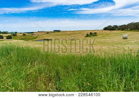 Picturesque Rural Landscape Of Field With Straw Bales And Small Pond On Sunny Day. Nature, Agricultu