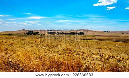 The Wide Open Farmland And Distant Mountains Along The N3 Between Warden And Villiers In The Free St
