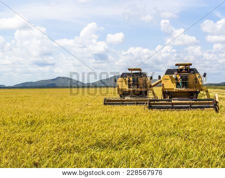 Roraima, Brazil, August 27, 2004. Combines Harvester Harvesting Rice On A Bright Day, In North Of Br
