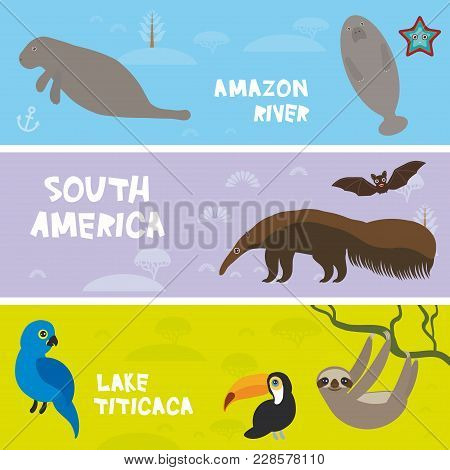 Cute Animals Set Anteater Manatee Sea Cow Sloth Toucan Bat Hyacinth Macaw, Kids Background, South Am