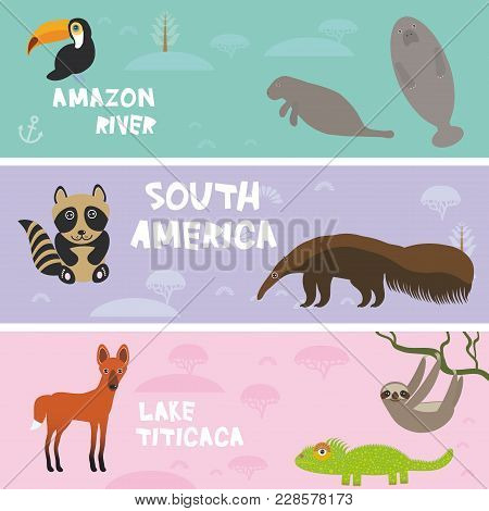 Cute Animals Set Anteater Manatee Sea Cow Sloth Toucan Chameleon Raccoon Maned Wolf, Kids Background