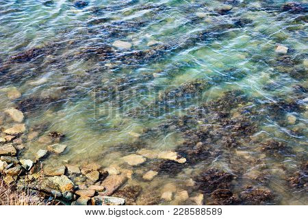 Rocky Shore Of Sea With Waves, Green Seaweed And Mossy On Stones In Sea. Top View Of Seascape. Shore