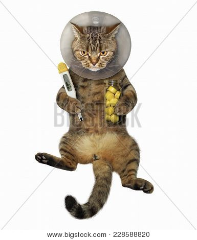 The Cat Is Wearing A Protective Veterinary Collar. It Holds A Thermometer And A Jar Of Pills.
