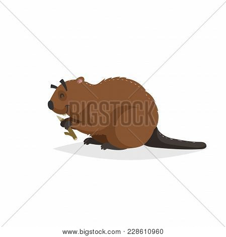 Cartoon Cheerful Beaver With Piece Of Wood. Forest Europe And North America Animal. Flat With Simple
