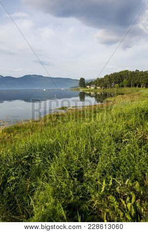 Beautiful Meadow With Green Grass At The Sea In Skjerstafjorden In Fauske, Norway.