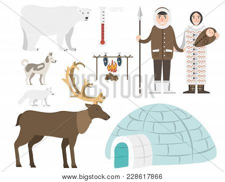 Alaska State Symbols Flat Style Vector America Travel Animal National Geographic Outdoor Wildlife No