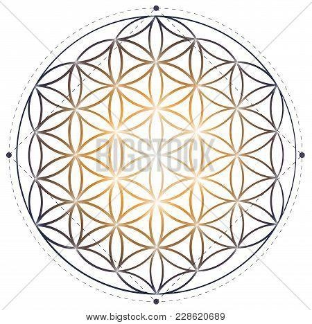 Sacred Geometry Illustration: Flower Of Life Symbol.