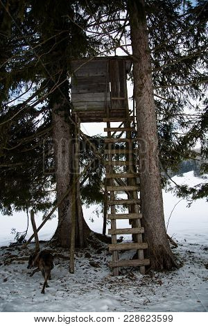High Seat In Winter, Observed, Distance, Tower