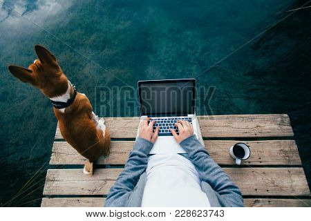 Pov Shot Of Remote Office Worker Chill With Dog On Pier During Camping Trip Or Walk In Park, Workaho