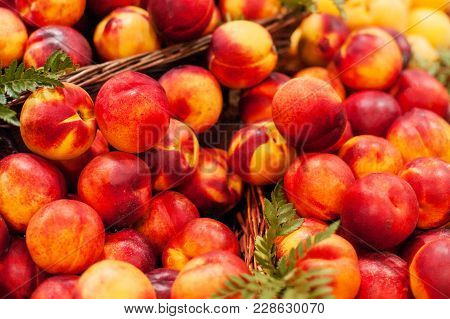 Organic Fresh Nectarines In The Market.  Nectarine Harvest.  Food Background