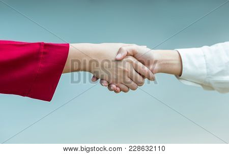Women Handshaking In Agreement Or Friendship, Good For Business, Friendship, Or Agreement Concept, P
