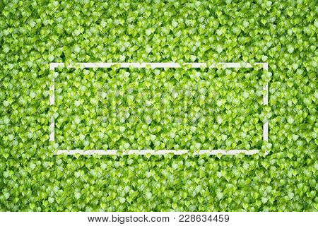 Blank Paper White Frame Over Green Leaves Background. Space For Text