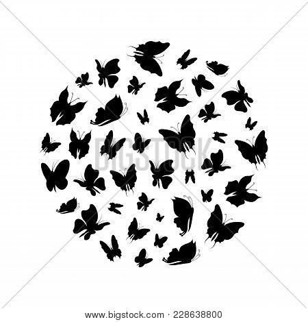Silhouette Black Fly Flock Of Butterflies Round Design Template Insect Decoration Element Nature Sty