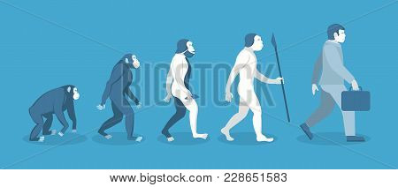 Cartoon Stage Of Human Evolution From Monkey To Businessman Development Concept Flat Design Style. V