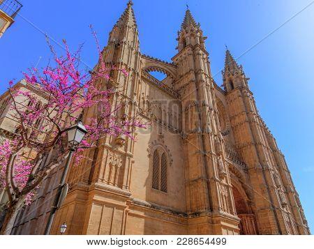 Cathedral Of Santa Maria Of Palma Against Clear Blue Sky, Majorca, Spain